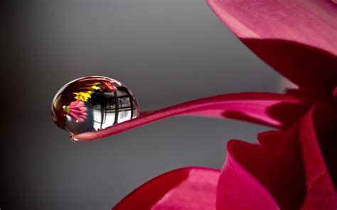 water drop reflection mac wallpaper   mac
