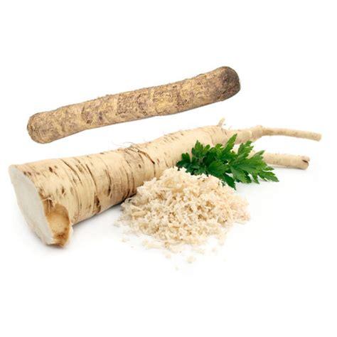 what is horseradish made from horseradish nutrition and health information veggies info
