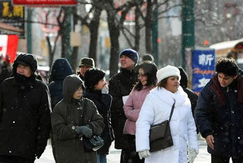 canada visible minorities majority decide settle immigrants toronto growing result many number
