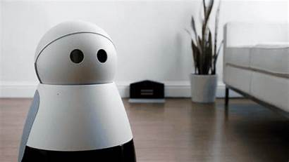 Robot Kuri Adorable Robots Friend Order Starts