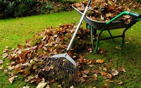 seven step winter garden clean up telegraph