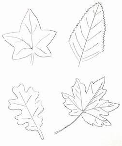 Feuilles D Automne à Imprimer : 59 dessins de coloriage automne imprimer sur page 6 ~ Nature-et-papiers.com Idées de Décoration