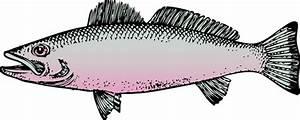 Fish clip art Free Vector / 4Vector