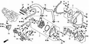 2003 Honda Cbr1100xx Cover  Water Pump  Engine