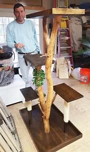 Kratzbaum Selbst Zusammenstellen : kratzbaum selber bauen 67 ideen und bauanleitungen katzenzubeh r pinterest ~ Orissabook.com Haus und Dekorationen