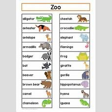 Zoo Word Wall  My Tpt Products  Classroom Word Wall, Zoo Animals List, Jungle Animals Pictures