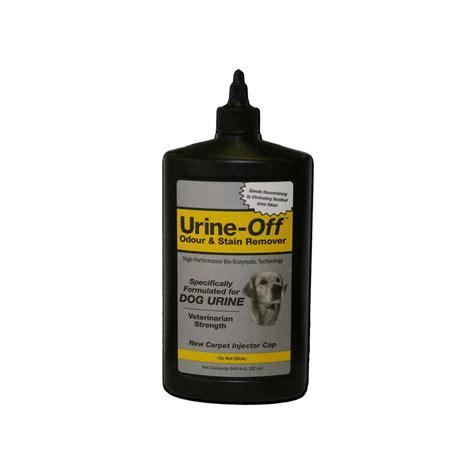 bureau de change chichester nettoyer tapis urine chien 28 images al 232 se pour