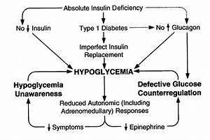 Negotiating The Barrier Of Hypoglycemia In Diabetes