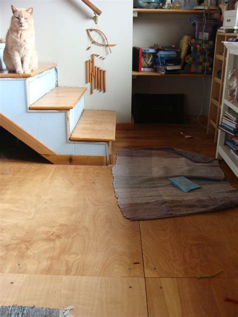 painting/sealing indoor plywood floor (finishes forum at