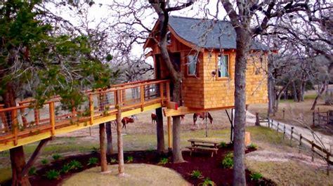 sky high spa treehouse masters wiki fandom powered