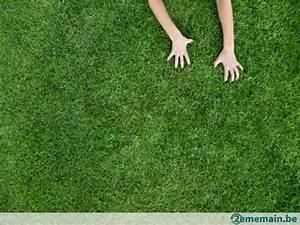 Gazon Synthetique Pas Cher Castorama : gazon pelouse synth tique d 39 occasion pas cher ~ Dailycaller-alerts.com Idées de Décoration
