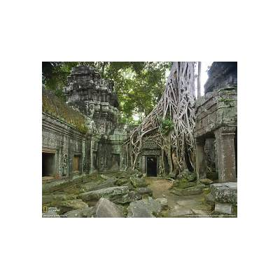 Ta Prohm: The Angkor Temple