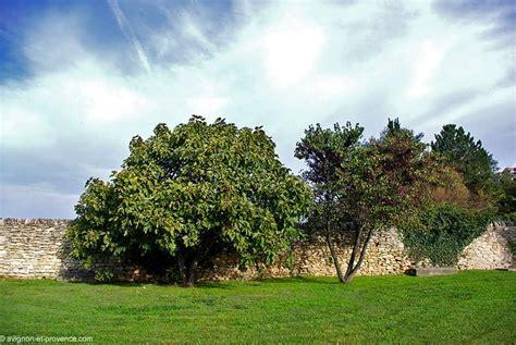 chambre d hotes grignan le jardin sévigné avignon et provence