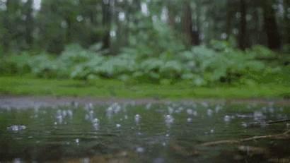 Rain Comes Gifs Raindrops Reddit Drops Tenor
