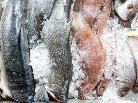 how to store fish how to store fish in the refrigerator serious eats