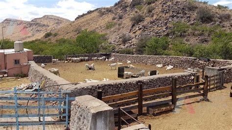 foto de Rancho en Venta en Chihuahua Provincia de Chihuahua