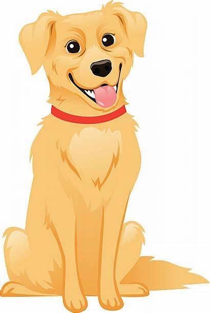 Retriever Golden Dog Vector Illustrations Illustration Clip