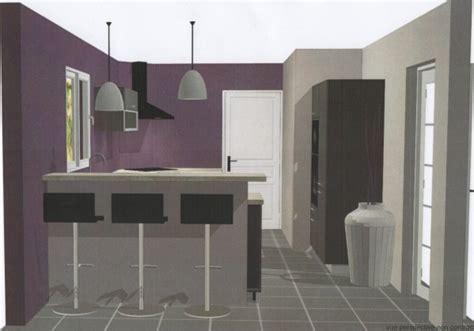 cuisine aubergine et grise la cuisine le de lebonheurcaseconstruit
