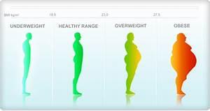 Ideal Height And Weight Chart Female Bmi Chart Women Health Info Blog