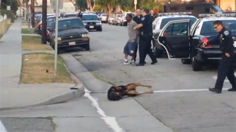 California Police Officer Shoots Man's Dog Four Times In
