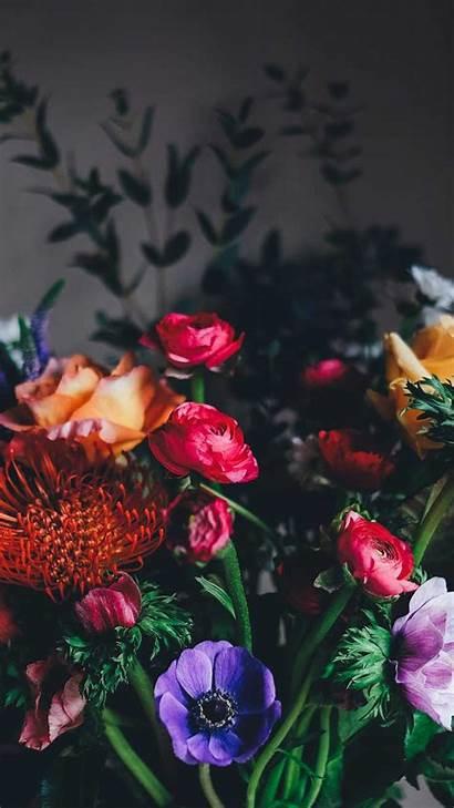 Iphone Wallpapers Flower Flowers Desktop