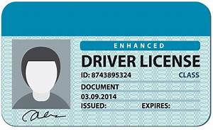 list of synonyms and antonyms of the word license With driving license template