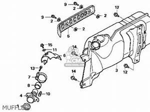 Honda Helix 250 Wiring Diagram - New.viddyup.com on honda shadow aero wiring diagram, honda helix engine, honda helix tires, honda 450r wiring diagram, honda rebel wiring diagram, honda helix ignition switch, honda trx 250 wiring diagram, honda motorcycle wiring schematics, honda helix parts, honda goldwing wiring diagram, honda helix motor diagram, honda cbr1000rr wiring diagram, honda spree wiring diagram, honda silver wing wiring diagram, honda passport wiring diagram, honda helix cooling diagram, honda metropolitan wiring diagram, honda 919 wiring diagram, honda nighthawk wiring diagram, honda helix water pump,