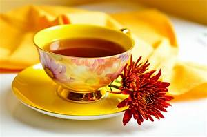 Calorie And Fat Calculator Chrysanthemum Tea Benefits And Side Effects