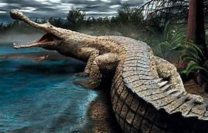 World's top 6 biggest prehistoric crocodiles ever lived ...