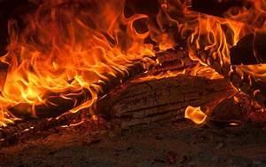 Feuer Kamin Garten : kamine garten zuhause ~ Markanthonyermac.com Haus und Dekorationen