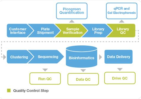 Illumina Customer Service Fasttrack Sequencing Service Process And Offerings