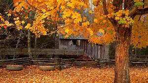 Download Autumn Cabin Wallpaper 1920x1080