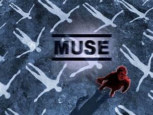 Muse - Muse Wallpaper (68237) - Fanpop