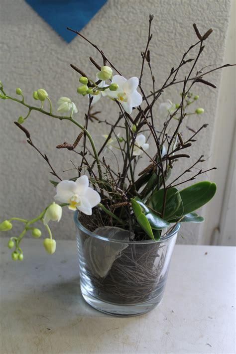 blumen dekorieren im glas diy weisse phalaenopsis orchidee selber in glas eintopfen nat 252 rlich dekorieren ideen