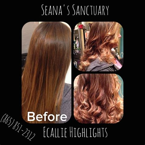 ecaille hair color 11 best ecaille hair color images on colors