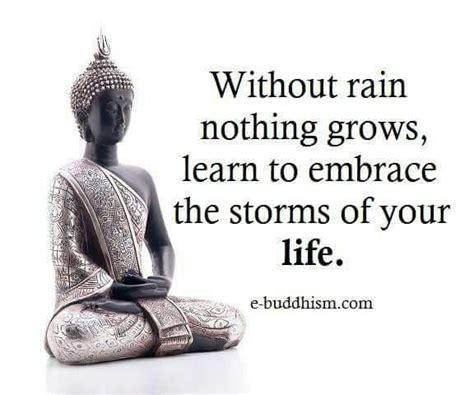 buddha quote ideas  pinterest buddha quotes