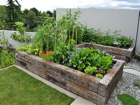 home vegetable garden  england vegetable garden