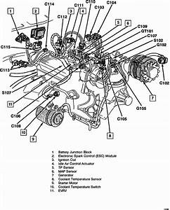 1997 S10 Engine Diagram