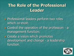 PPT - Professional Leadership PowerPoint Presentation - ID ...