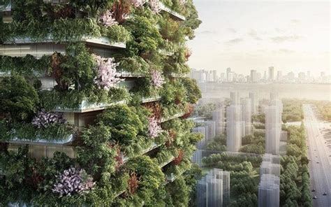 plans   vertical forest hotel unveiled  china telegraph travel