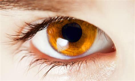 Vision Cells Affect Color Blindness