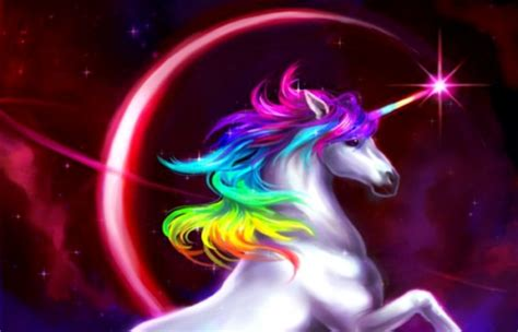 Rainbow Animal Wallpaper - rainbow unicorn abstract background wallpapers