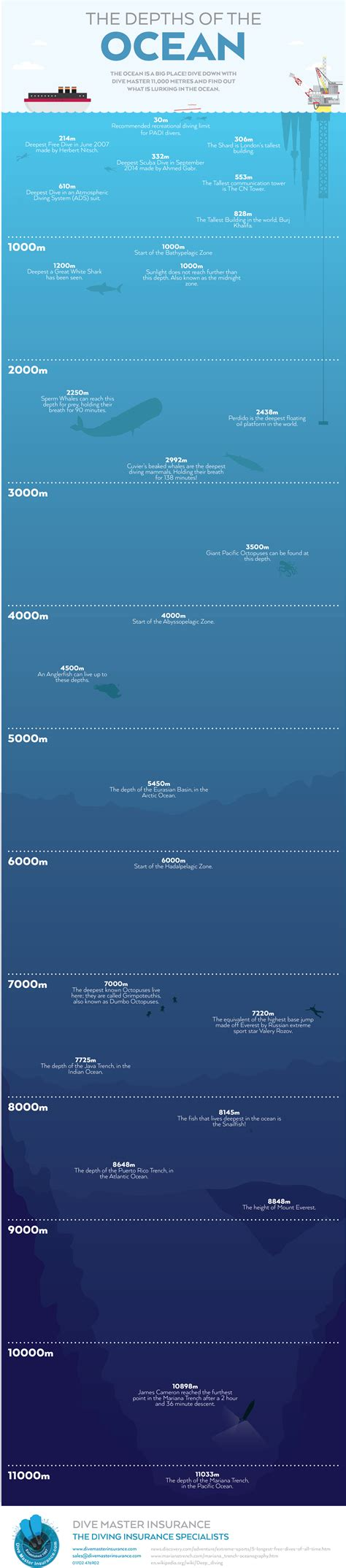The gallery for > Ocean Depth Graphic
