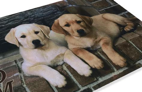 Tappeto Zerbino Digital Friends Cm.40x60 Cane Cani Labrador
