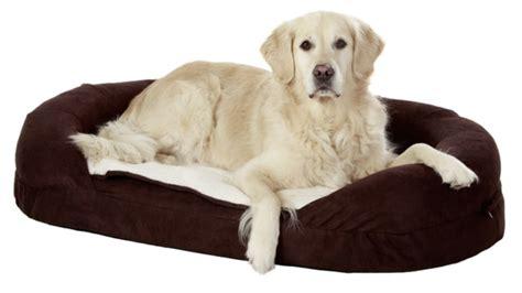 le tapis pour chien grande taille est ici archzinefr