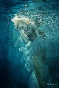 1000+ images about Mermaids & Dolphins on Pinterest ...