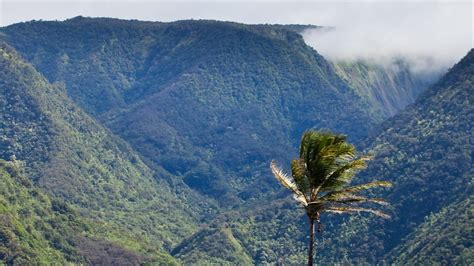 bureau vall drive pololu valley overlook in kapaau hawaii expedia
