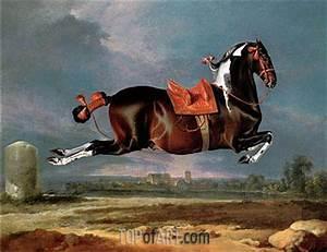 The Piebald Horse 'Cehero' Rearing | Johann Georg Hamilton ...