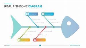 Real Fishbone Diagram