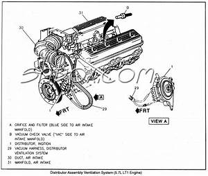 85 Chevy 305 Distributor Diagram